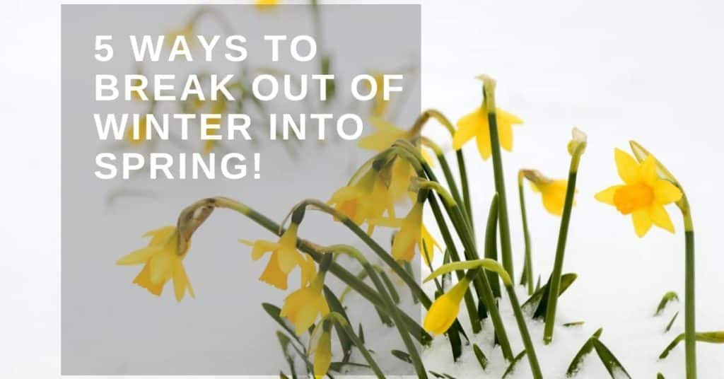 5 Ways to Break Out of Winter Into Spring!