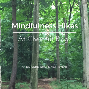 Meet Nicole Chumsky, your Mindfulness Hike Leader