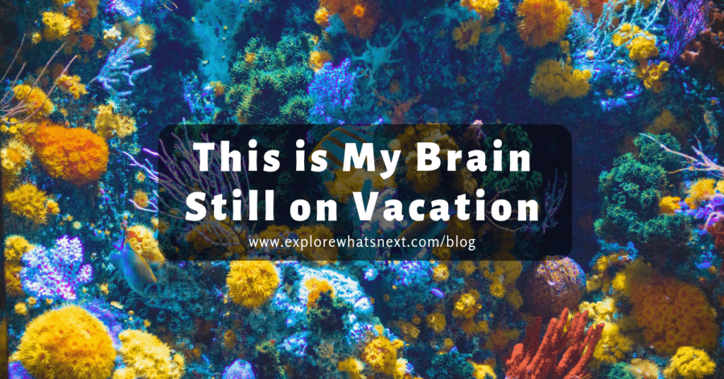 This is My Brain Still on Vacation
