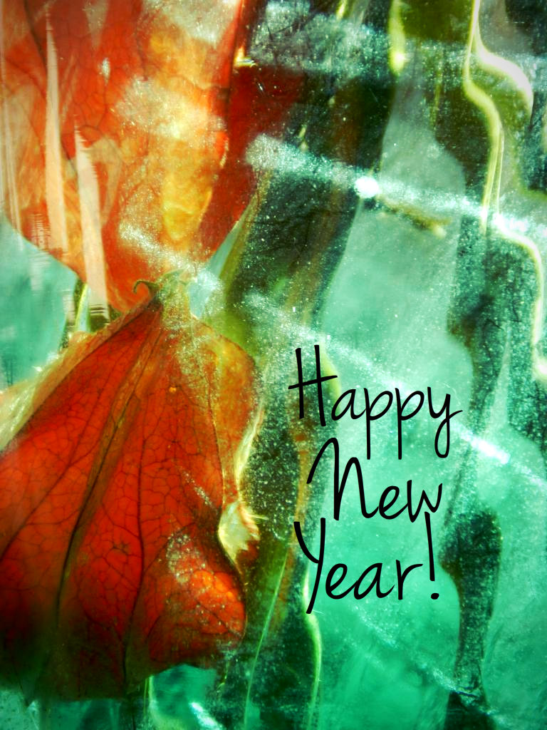 2013! Warmest wishes for peace of mind, love of self and resiliency of spirit!