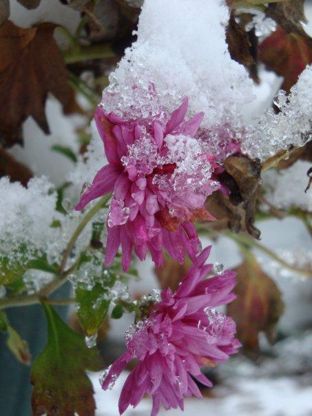 Snow in March?! 10 Ways to Fight Springtime SAD!