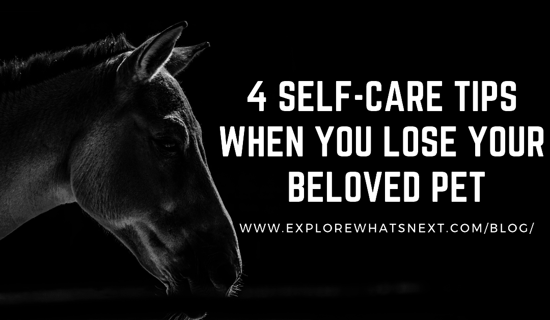 4 Self-Care Tips When You Lose Your Beloved Pet